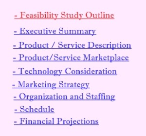 Feasibility study outline