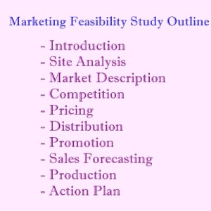 market feasibility outline