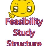 feasibility study structure