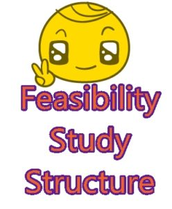 guidelines in project feasibility Project preparation/feasibility guidelines for ppp projects 3 1 background project feasibility guidelines set out a simple methodology by which implementing.